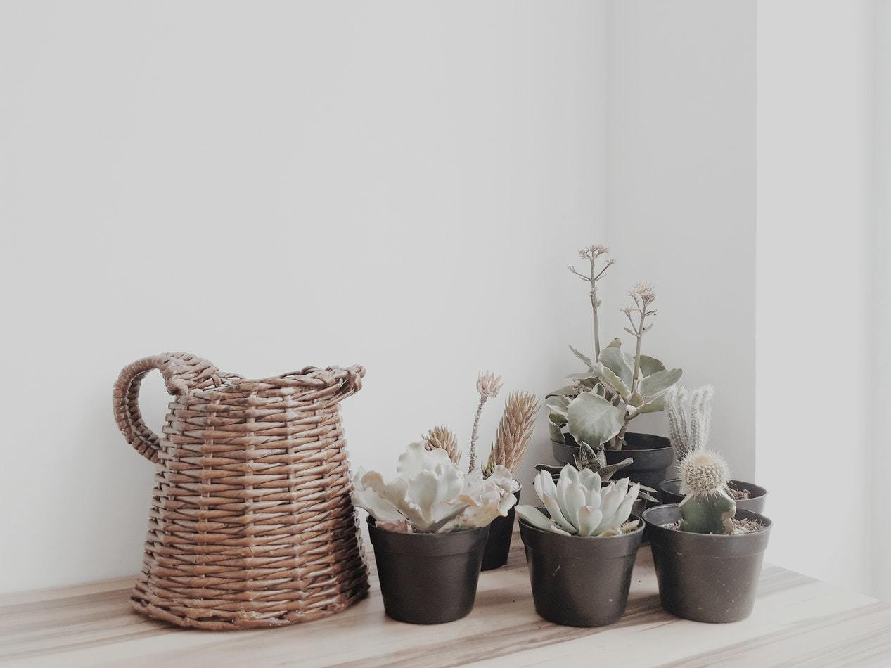 Add some desert plants and a wicker basket pitcher to add a splash of uniqueness to your farmhouse look.